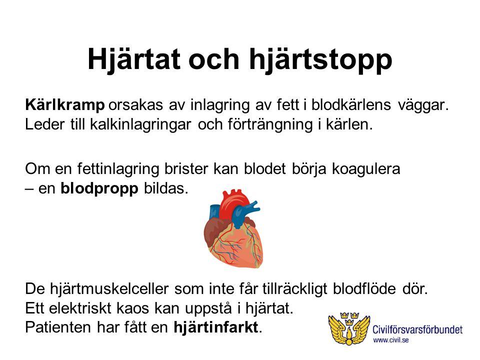 Hjärtat och hjärtstopp Kärlkramp orsakas av inlagring av fett i blodkärlens väggar.