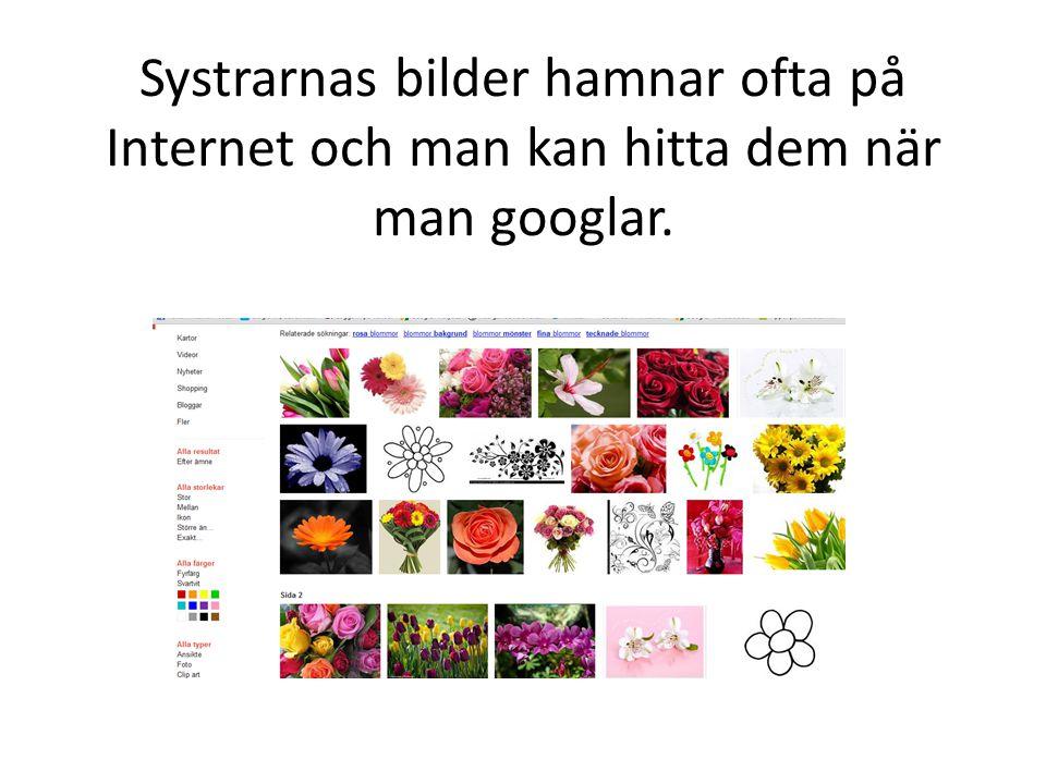 Systrarnas bilder hamnar ofta på Internet och man kan hitta dem när man googlar.