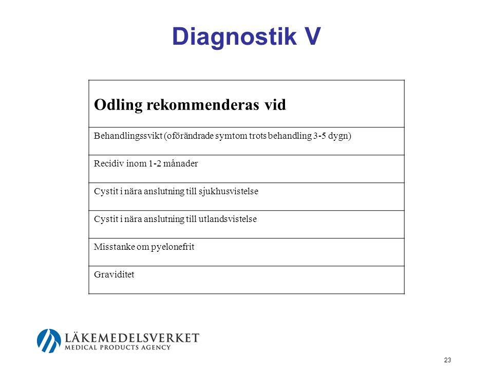 23 Diagnostik V Odling rekommenderas vid Behandlingssvikt (oförändrade symtom trots behandling 3-5 dygn) Recidiv inom 1-2 månader Cystit i nära anslut