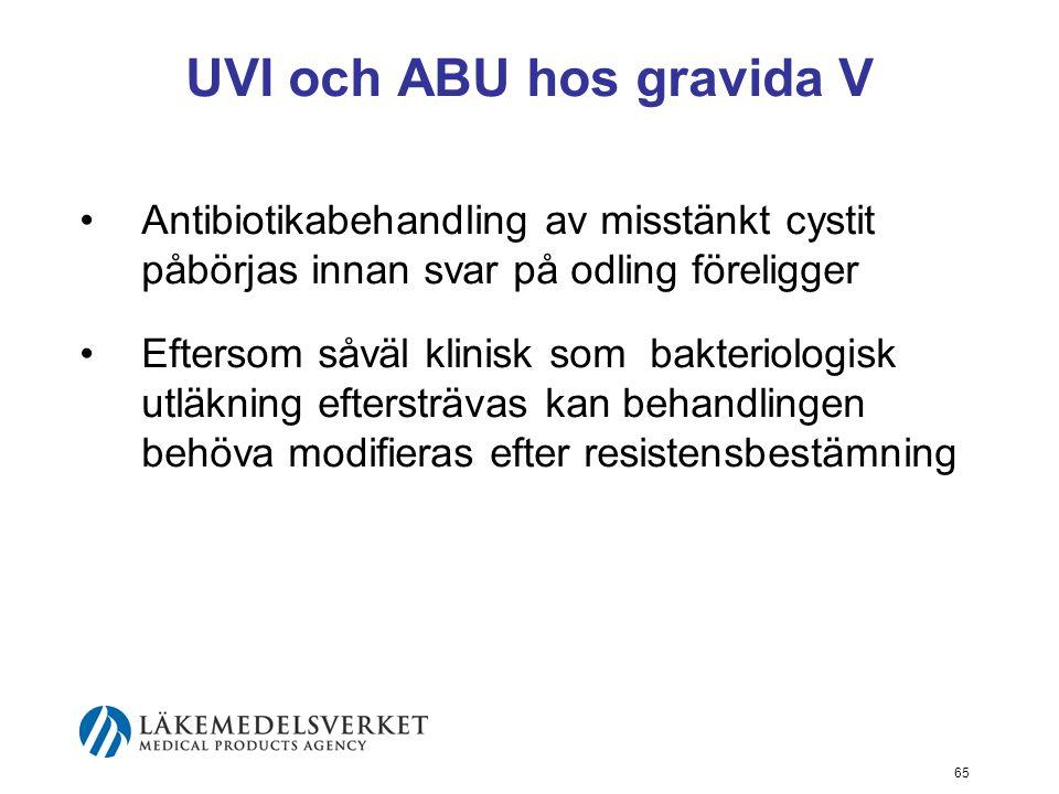 65 UVI och ABU hos gravida V Antibiotikabehandling av misstänkt cystit påbörjas innan svar på odling föreligger Eftersom såväl klinisk som bakteriolog