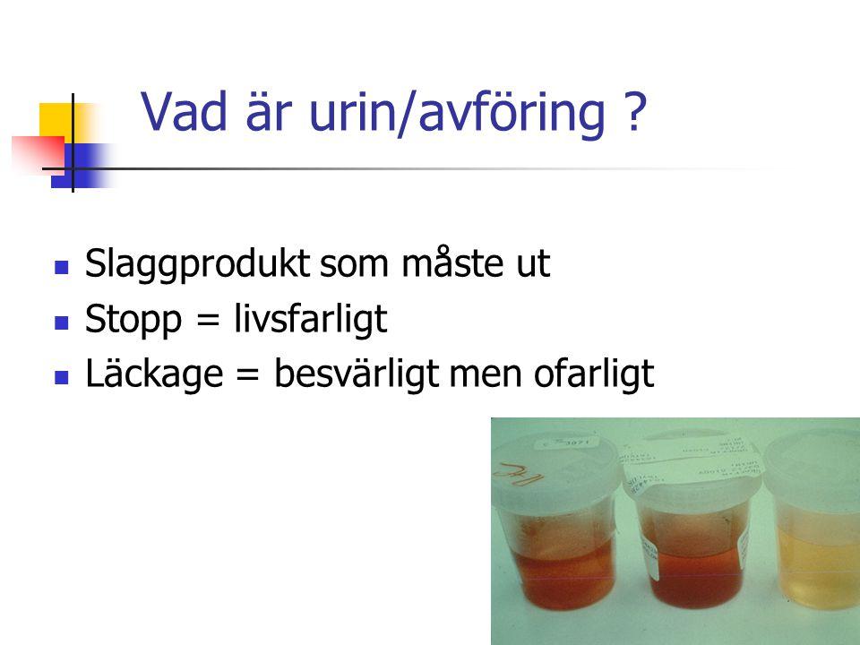 Vad är urin/avföring ? Slaggprodukt som måste ut Stopp = livsfarligt Läckage = besvärligt men ofarligt