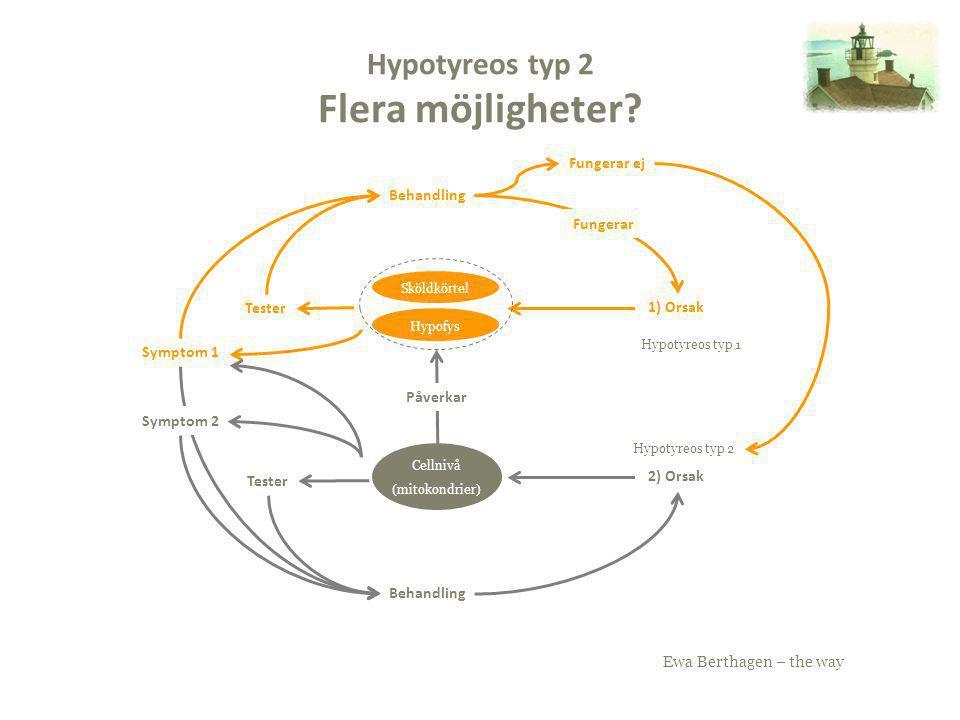 Ewa Berthagen – the way Hypotyreos typ 2 Flera möjligheter? Sköldkörtel Hypofys 1) Orsak Cellnivå (mitokondrier) 2) Orsak Tester Påverkar Symptom 1 Be