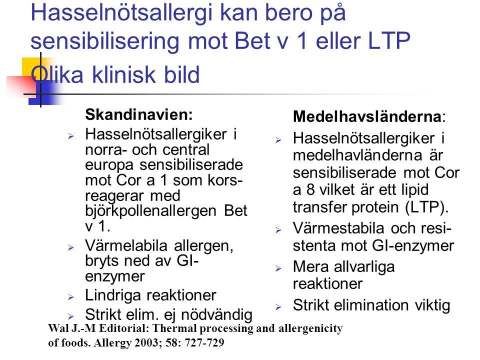 Hasselnötsallergi kan bero på sensibilisering mot Bet v 1 eller LTP Olika klinisk bild Skandinavien:  Hasselnötsallergiker i norra- och central europ