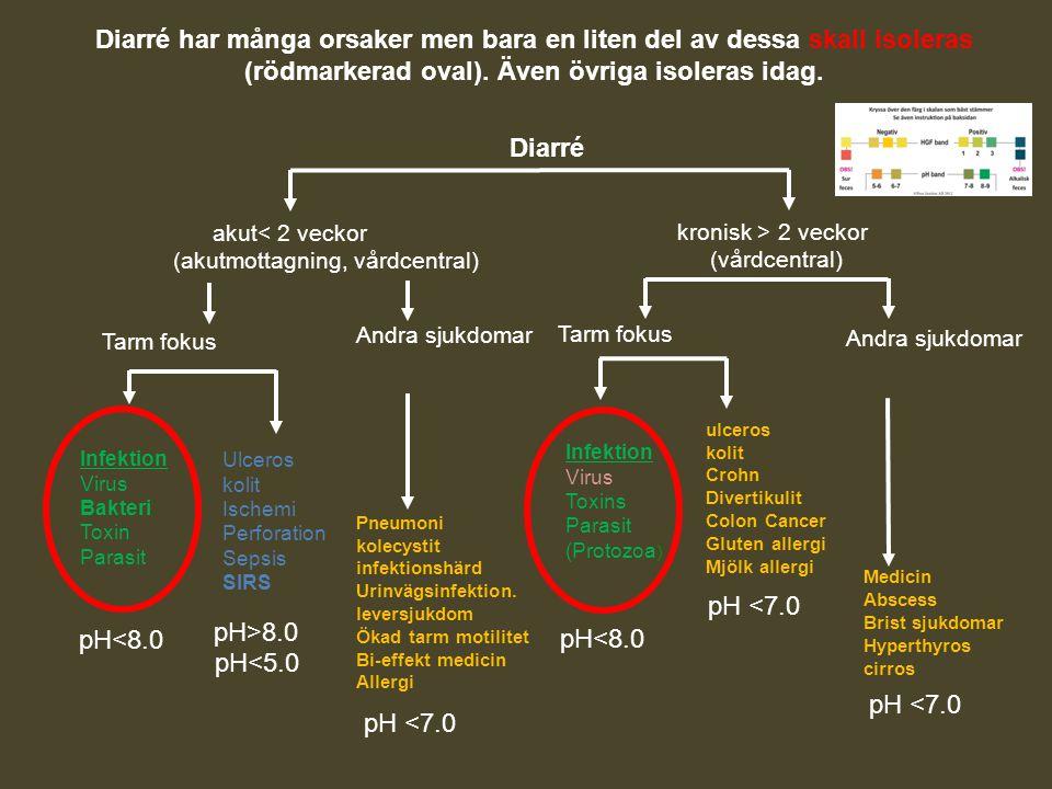 Diarré har många orsaker men bara en liten del av dessa skall isoleras (rödmarkerad oval). Även övriga isoleras idag. Diarré akut< 2 veckor (akutmotta
