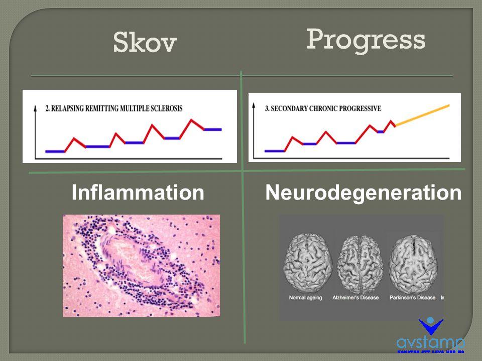 Skov Progress NeurodegenerationInflammation