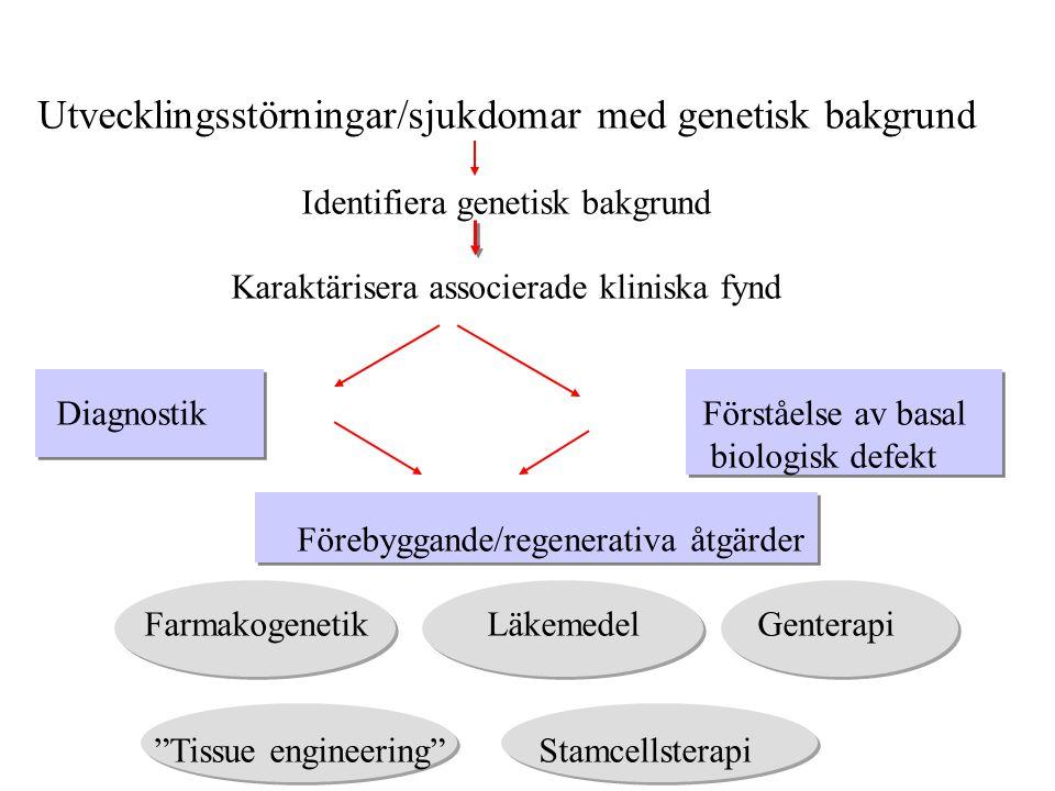Utvecklingsstörningar/sjukdomar med genetisk bakgrund Identifiera genetisk bakgrund Karaktärisera associerade kliniska fynd Diagnostik Förståelse av b