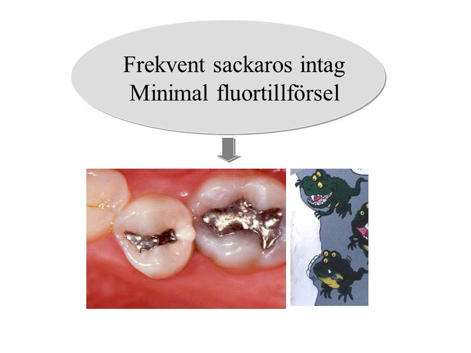 Frekvent sackaros intag Minimal fluortillförsel