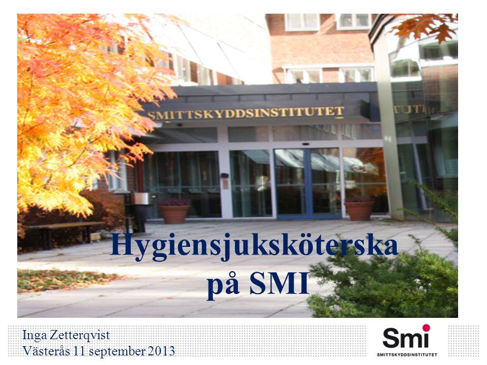 Hygiensjuksköterska på SMI Inga Zetterqvist Västerås 11 september 2013