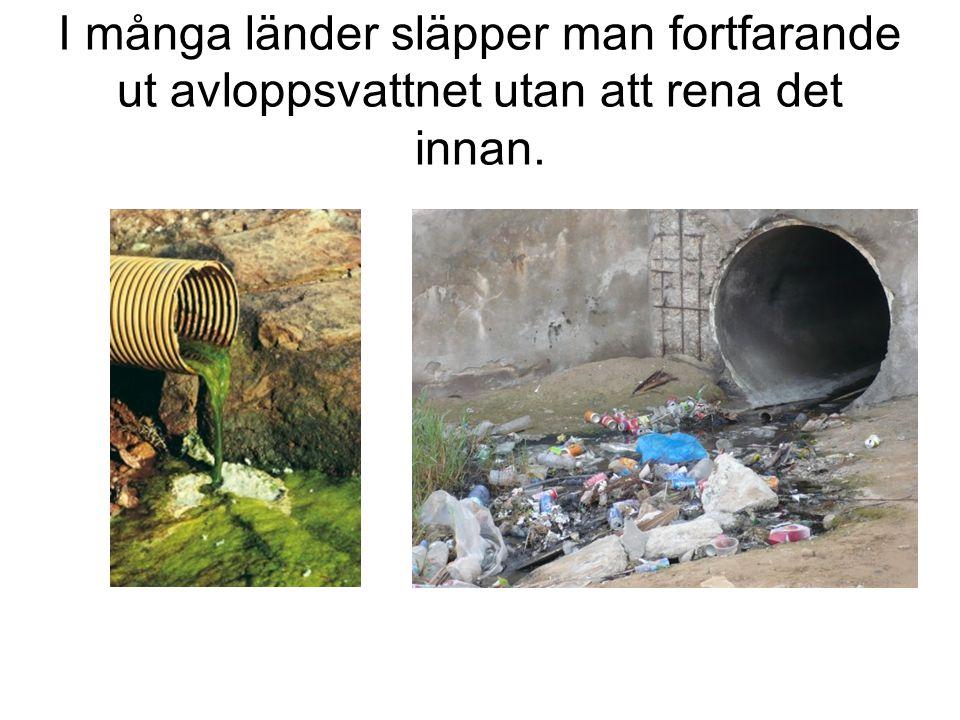 I många länder släpper man fortfarande ut avloppsvattnet utan att rena det innan.