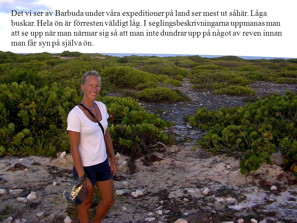 Det vi ser av Barbuda under våra expeditioner på land ser mest ut såhär.