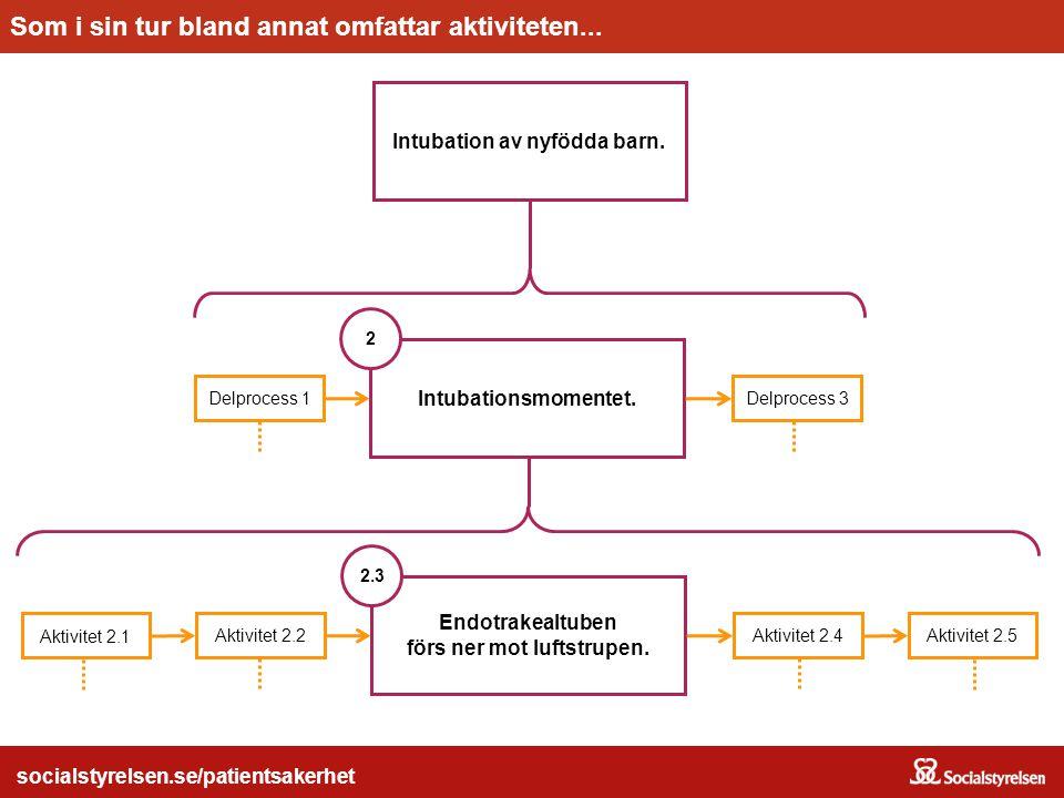 socialstyrelsen.se/patientsakerhet Intubation av nyfödda barn. Huvudprocessen...Omfattar bland annat delprocessen... socialstyrelsen.se/patientsakerhe