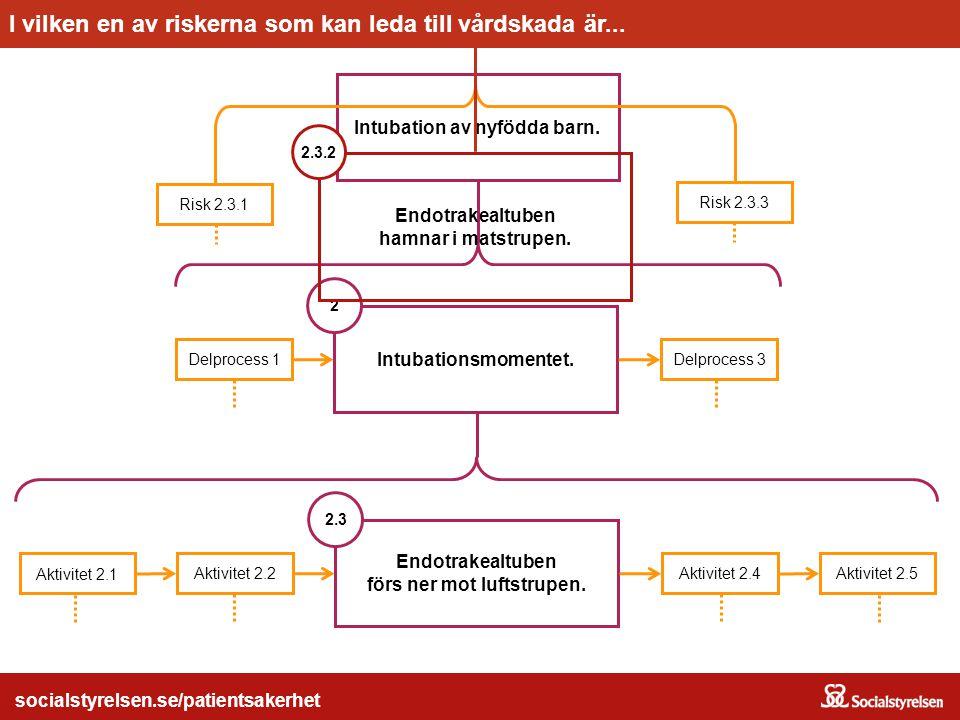 socialstyrelsen.se/patientsakerhet Intubation av nyfödda barn. Intubationsmomentet. Delprocess 1 2 Delprocess 3 Endotrakealtuben förs ner mot luftstru