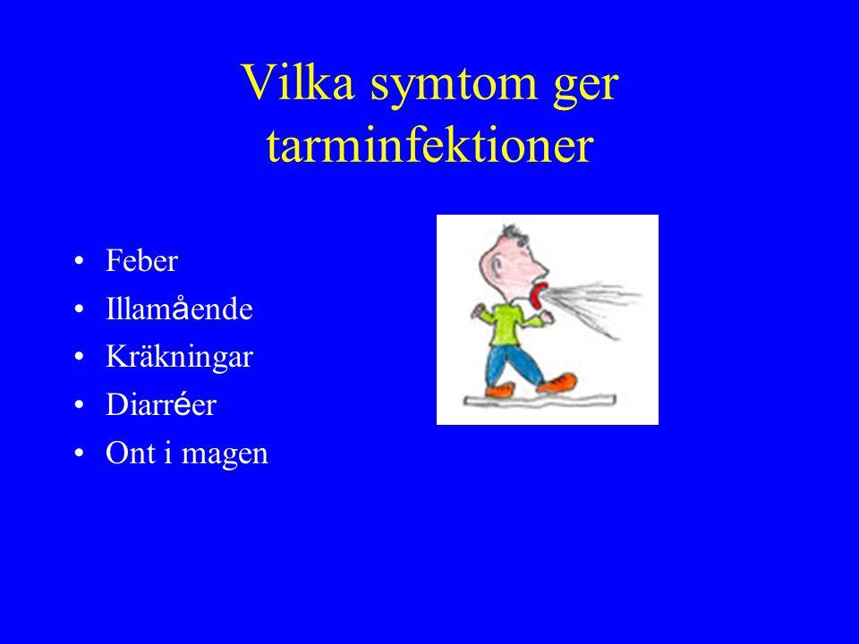 Vilka symtom ger tarminfektioner Feber Illam å ende Kräkningar Diarr é er Ont i magen