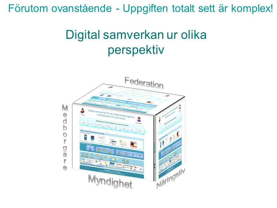 Digital samverkan ur olika perspektiv Förutom ovanstående - Uppgiften totalt sett är komplex!