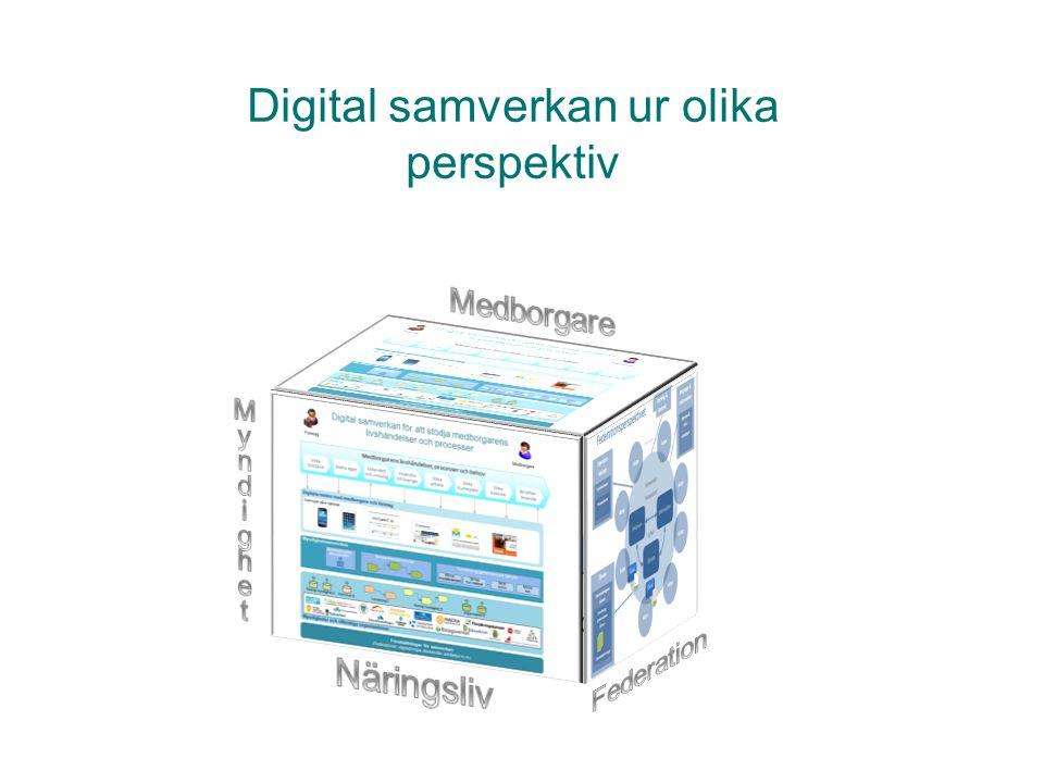 Digital samverkan ur olika perspektiv