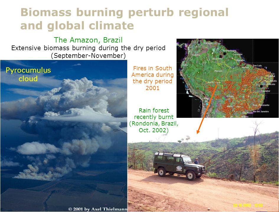 Lunds Universitet / Fysiska institutionen / Avdelningen för kärnfysik / Adam Kristensson – Polhemsskolan 29/1 2013 Biomass burning perturb regional an