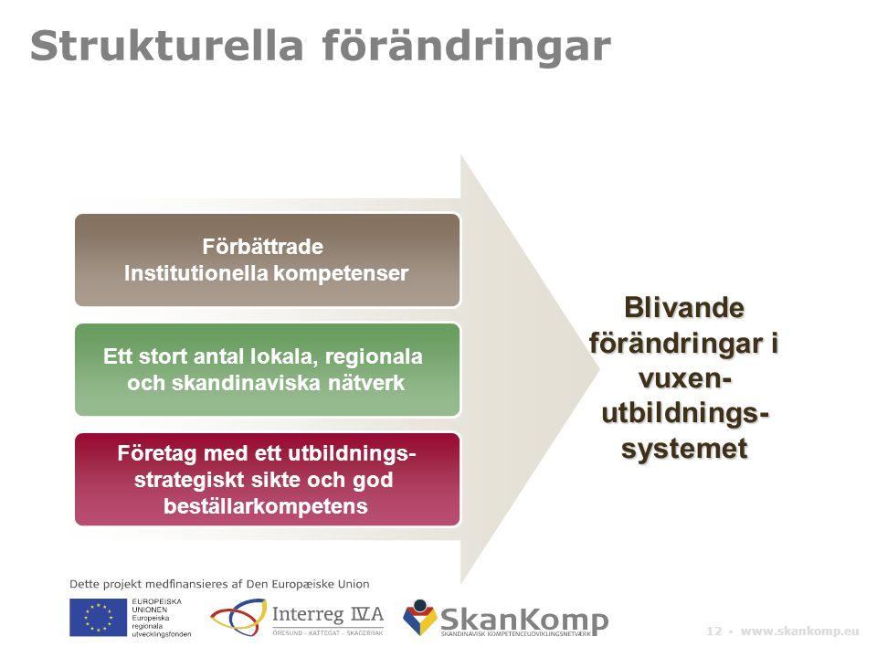12 ▪ www.skankomp.eu Strukturella förändringar Förbättrade Institutionella kompetenser Ett stort antal lokala, regionala och skandinaviska nätverk Företag med ett utbildnings- strategiskt sikte och god beställarkompetens Blivande förändringar i vuxen- utbildnings- systemet