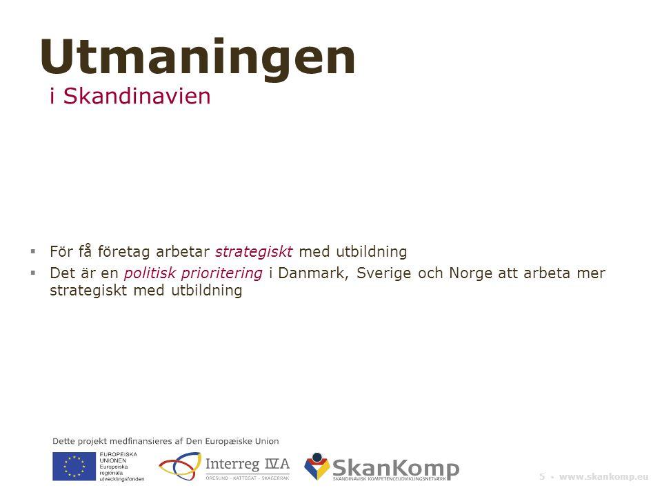 5 ▪ www.skankomp.eu  För få företag arbetar strategiskt med utbildning  Det är en politisk prioritering i Danmark, Sverige och Norge att arbeta mer strategiskt med utbildning Utmaningen i Skandinavien