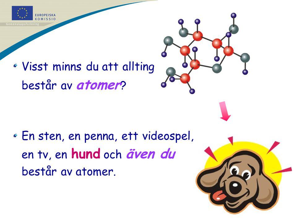 Visst minns du att allting består av atomer ? En sten, en penna, ett videospel, en tv, en hund och även du består av atomer.