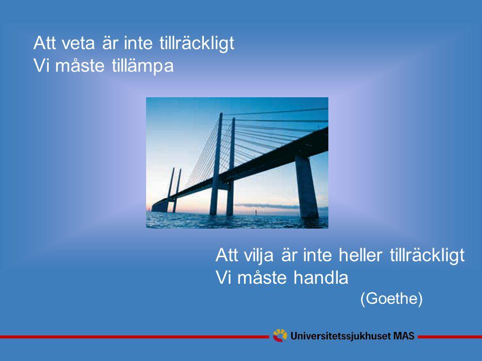 Att veta är inte tillräckligt Vi måste tillämpa Att vilja är inte heller tillräckligt Vi måste handla (Goethe)