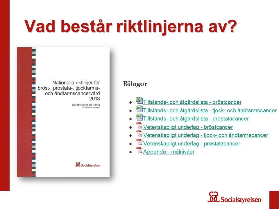 Tillgång till namngiven kontaktsjuksköterska eller motsvarande Exempel på andras målnivåer: RCC Syd (2012): 100 procent Föreslagen målnivå i Nationella riktlinjer: 100 procent 20