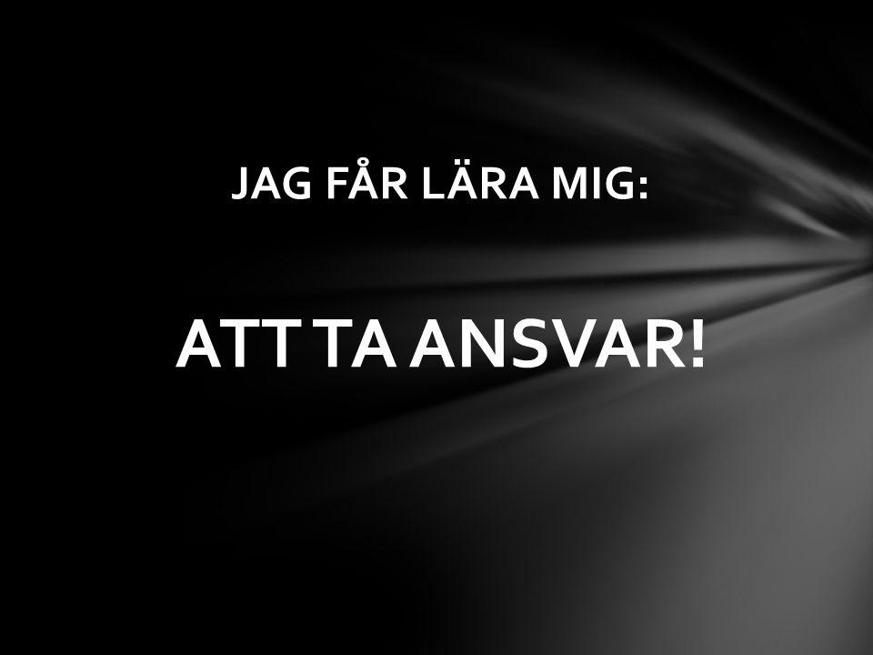 JAG FÅR LÄRA MIG: ATT TA ANSVAR!