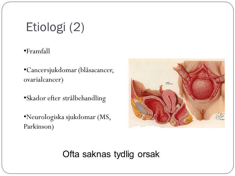 Etiologi (2) Framfall Cancersjukdomar (blåsacancer, ovarialcancer) Skador efter strålbehandling Neurologiska sjukdomar (MS, Parkinson) Ofta saknas tydlig orsak