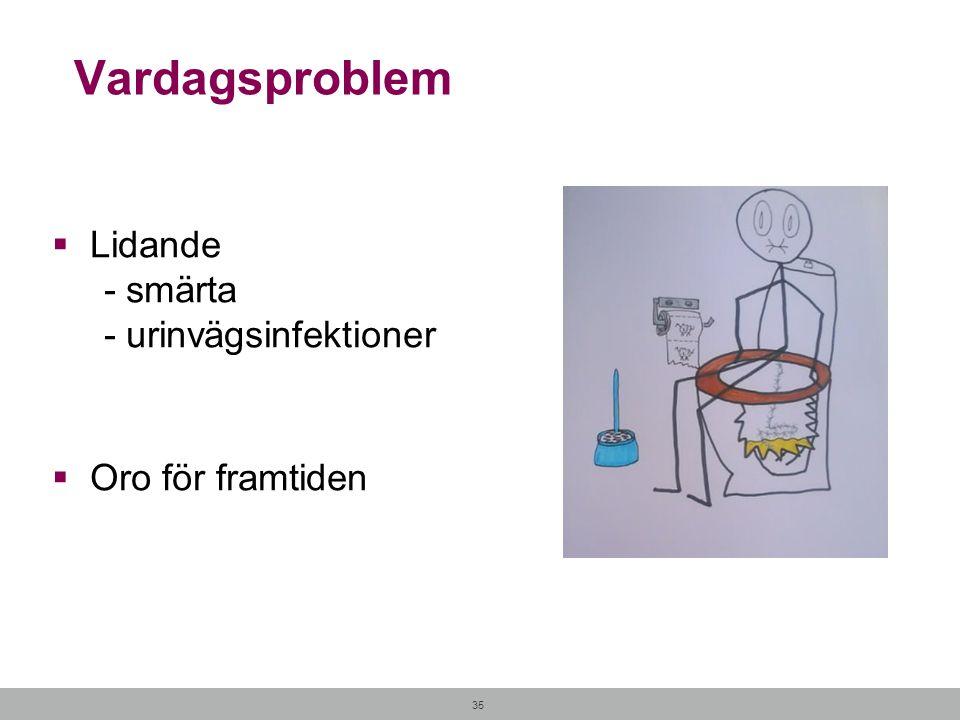35 Vardagsproblem  Lidande - smärta - urinvägsinfektioner  Oro för framtiden