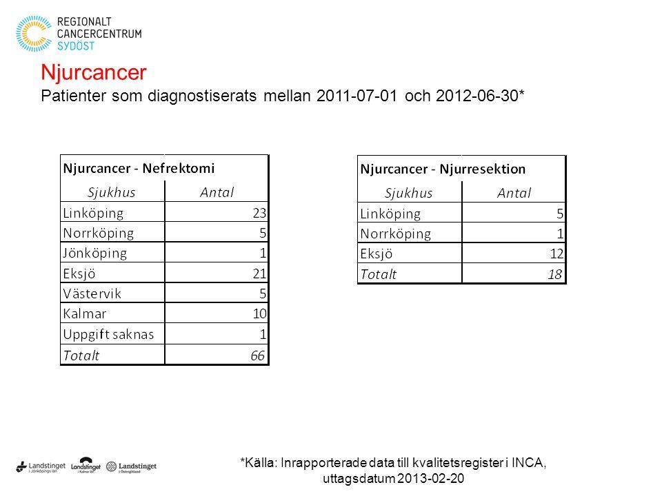 Njurcancer Patienter som diagnostiserats mellan 2011-07-01 och 2012-06-30* *Källa: Inrapporterade data till kvalitetsregister i INCA, uttagsdatum 2013
