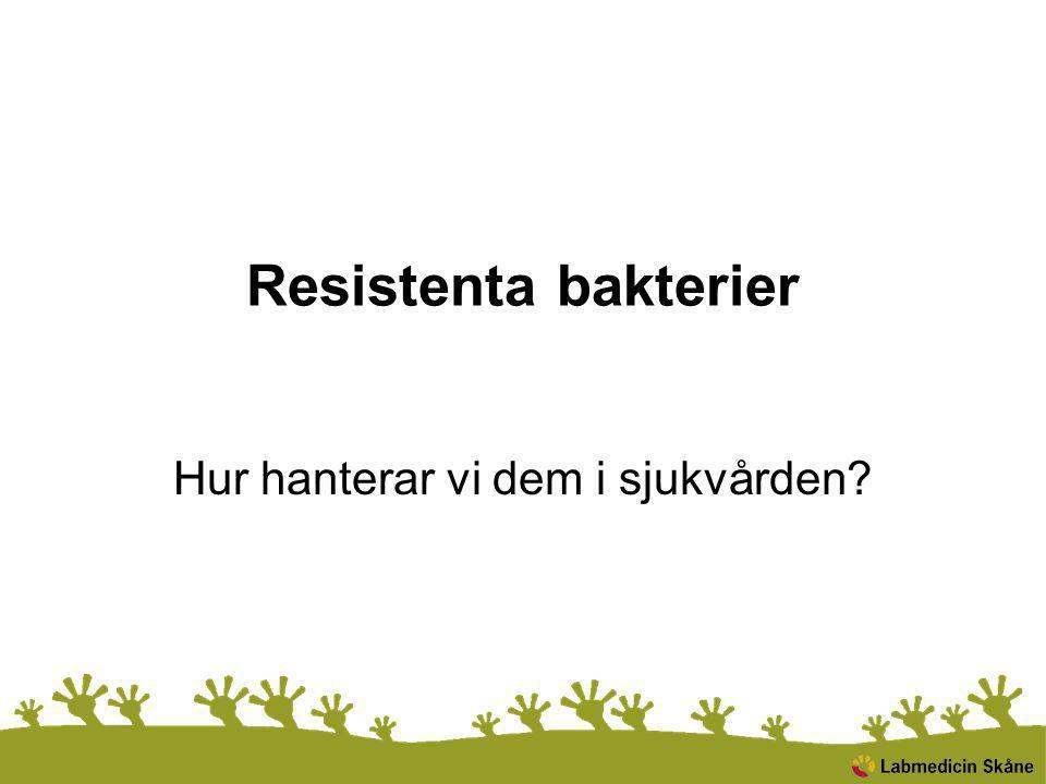Resistenta bakterier Hur hanterar vi dem i sjukvården?