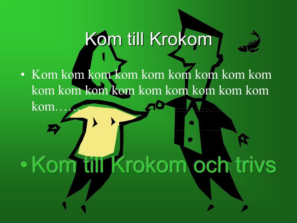 Kom till Krokom