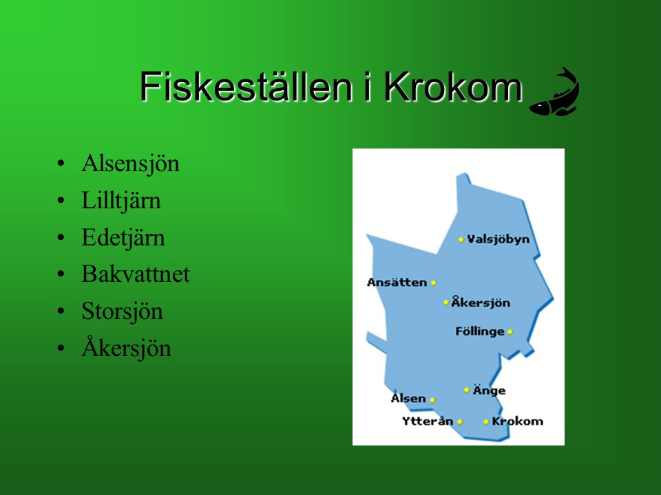Fiskeställen i Krokom Alsensjön Lilltjärn Edetjärn Bakvattnet Storsjön Åkersjön
