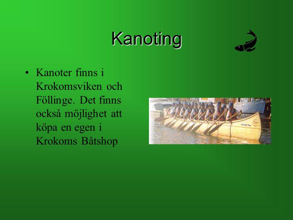 Kanoting Kanoter finns i Krokomsviken och Föllinge. Det finns också möjlighet att köpa en egen i Krokoms Båtshop