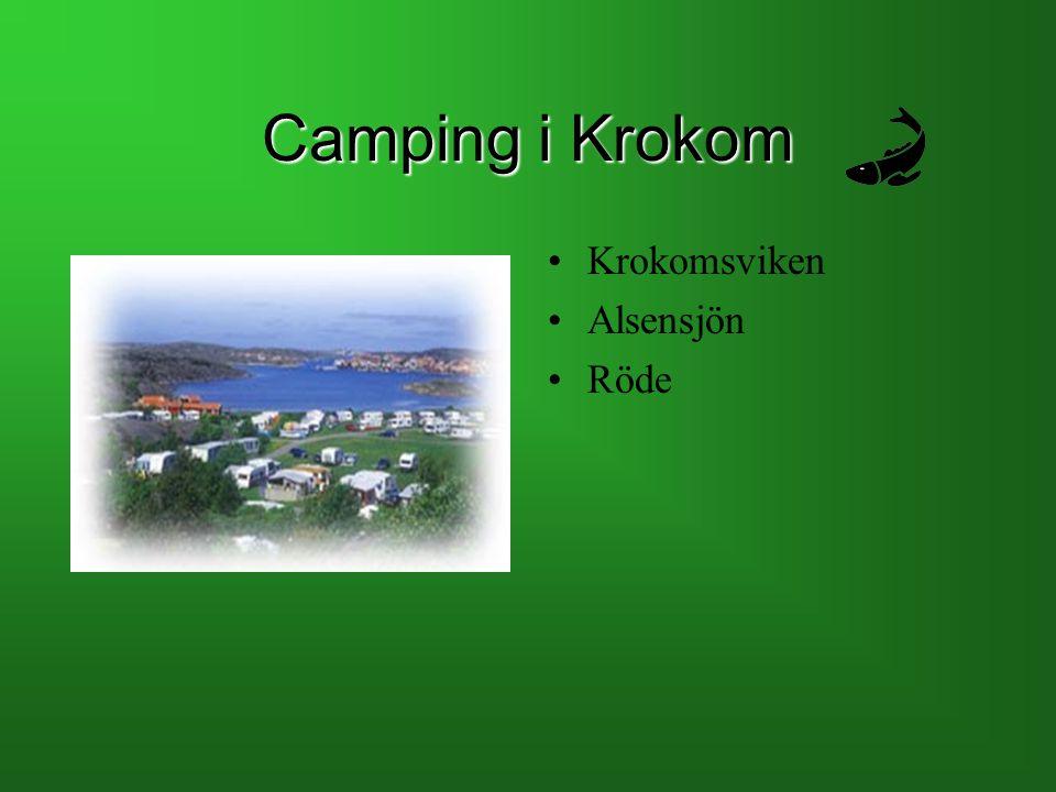Camping i Krokom Krokomsviken Alsensjön Röde