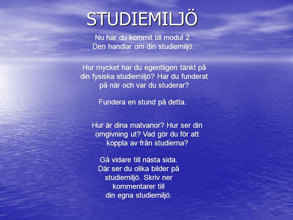 Nu har du kommit till modul 2. Den handlar om din studiemiljö. Hur mycket har du egentligen tänkt på din fysiska studiemiljö? Har du funderat på när o