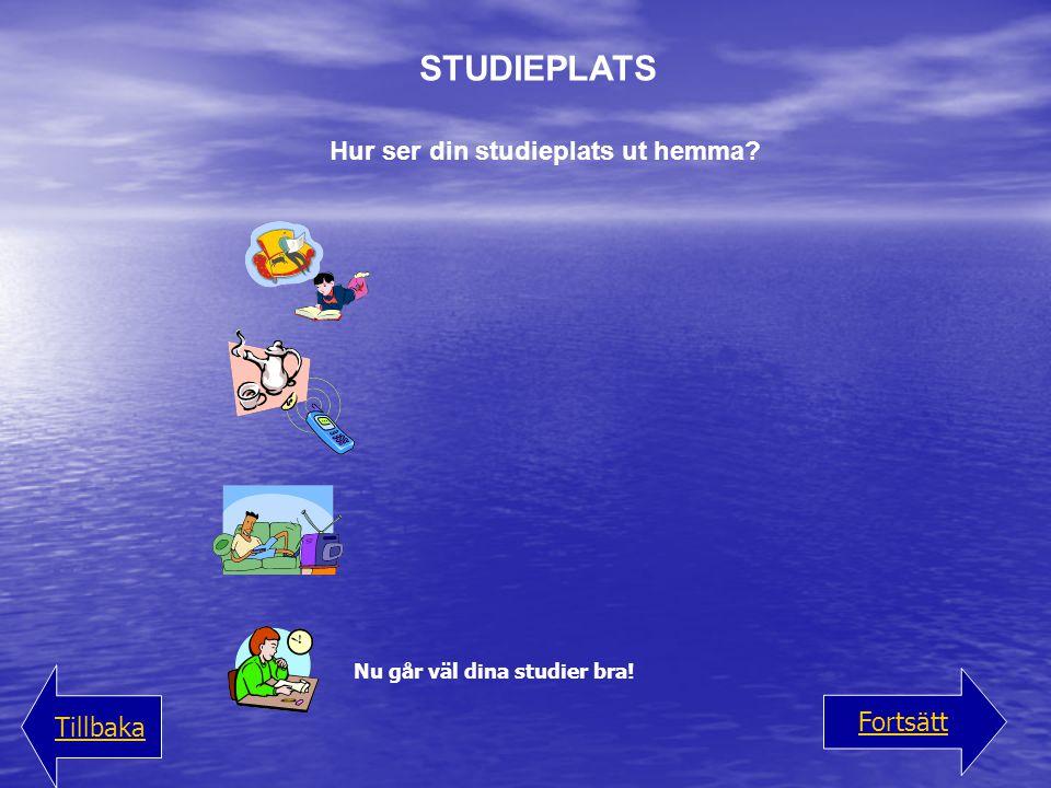 Hur ser din studieplats ut hemma? STUDIEPLATS Nu går väl dina studier bra! Fortsätt Tillbaka