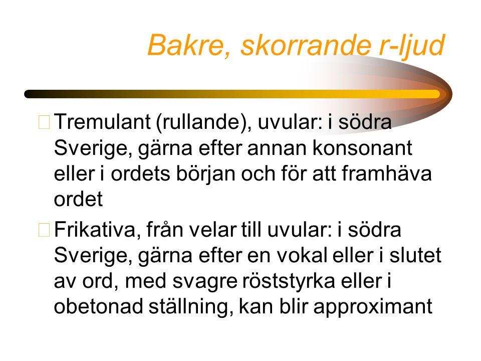 Bakre, skorrande r-ljud •Tremulant (rullande), uvular: i södra Sverige, gärna efter annan konsonant eller i ordets början och för att framhäva ordet •Frikativa, från velar till uvular: i södra Sverige, gärna efter en vokal eller i slutet av ord, med svagre röststyrka eller i obetonad ställning, kan blir approximant
