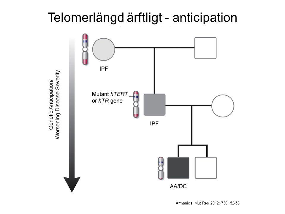 Armanios. Mut Res 2012; 730: 52-58 Telomerlängd ärftligt - anticipation