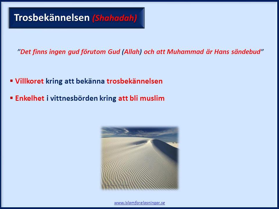www.islamforelasningar.se Trosbekännelsen (Shahadah) Det finns ingen gud förutom Gud (Allah) och att Muhammad är Hans sändebud  Villkoret kring att bekänna trosbekännelsen  Enkelhet i vittnesbörden kring att bli muslim