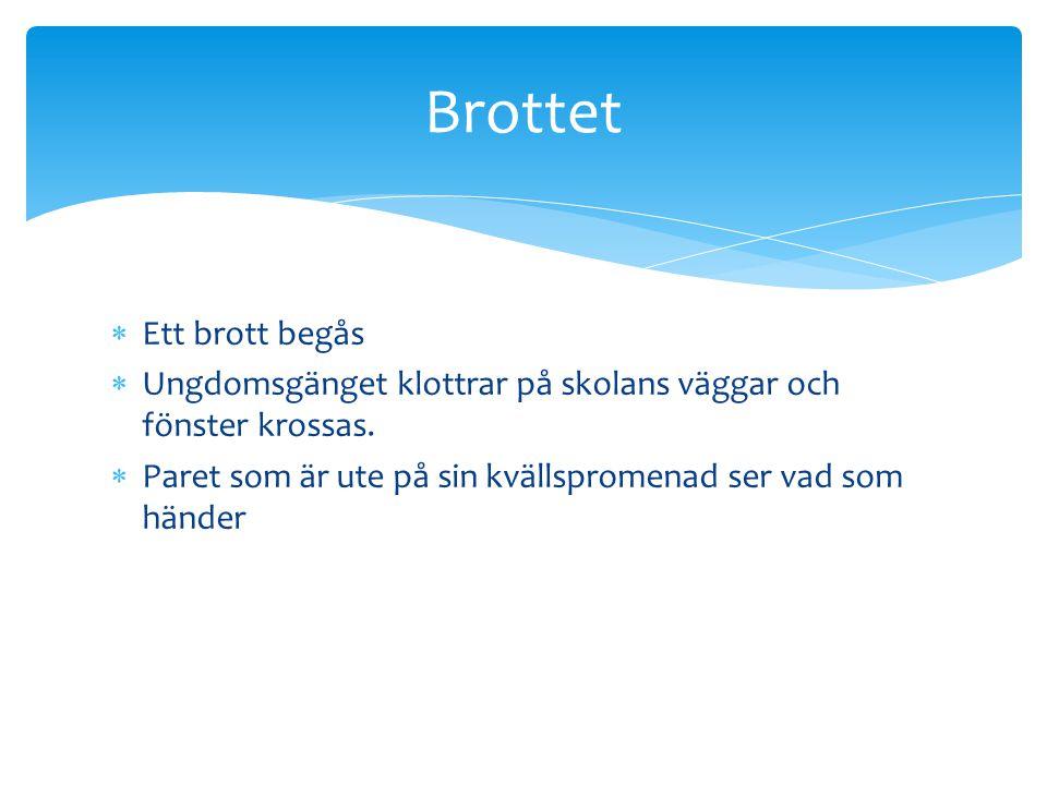  I Sverige finns domstolar i tre nivåer:  -Tingsrätter (48 st.) Finns utspridda över hela landet.