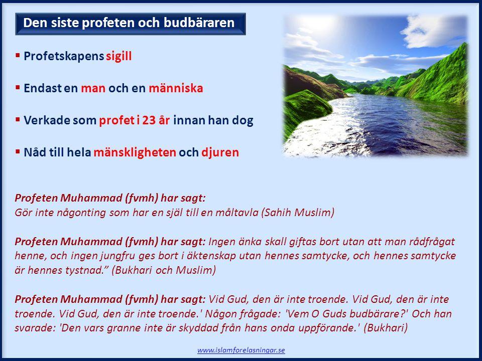  Profetskapens sigill  Endast en man och en människa  Verkade som profet i 23 år innan han dog  Nåd till hela mänskligheten och djuren Profeten Muhammad (fvmh) har sagt: Gör inte någonting som har en själ till en måltavla (Sahih Muslim) Profeten Muhammad (fvmh) har sagt: Ingen änka skall giftas bort utan att man rådfrågat henne, och ingen jungfru ges bort i äktenskap utan hennes samtycke, och hennes samtycke är hennes tystnad. (Bukhari och Muslim) Profeten Muhammad (fvmh) har sagt: Vid Gud, den är inte troende.