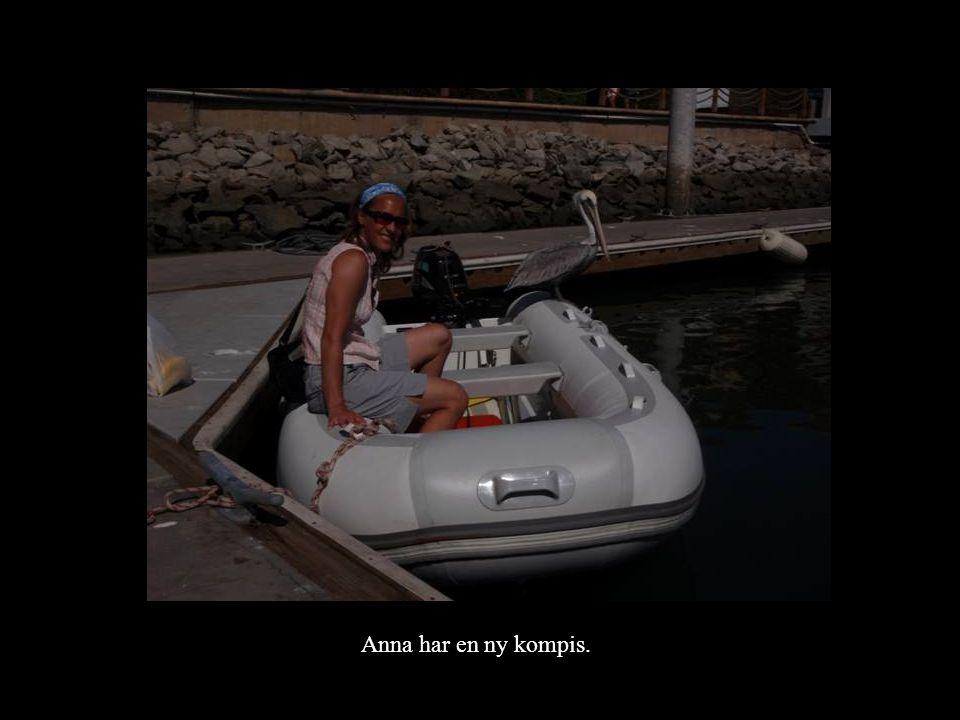 Anna har en ny kompis.