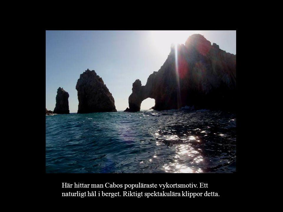 Här hittar man Cabos populäraste vykortsmotiv. Ett naturligt hål i berget. Riktigt spektakulära klippor detta.
