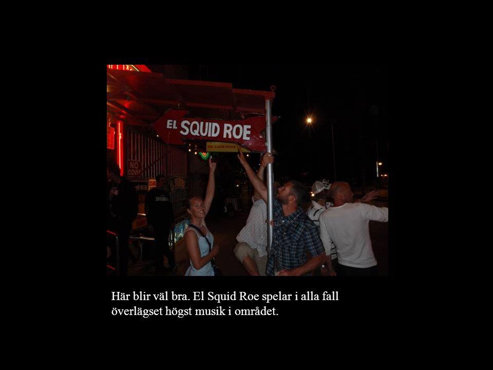 Här blir väl bra. El Squid Roe spelar i alla fall överlägset högst musik i området.