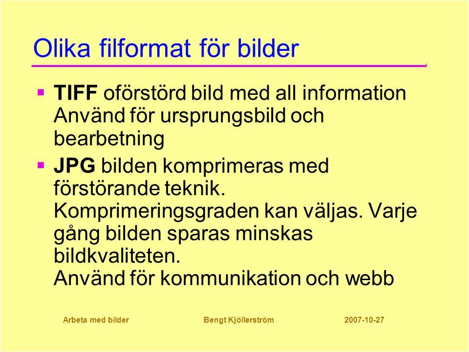 Arbeta med bilder Bengt Kjöllerström 2007-10-27 Olika filformat för bilder  TIFF oförstörd bild med all information Använd för ursprungsbild och bearbetning  JPG bilden komprimeras med förstörande teknik.