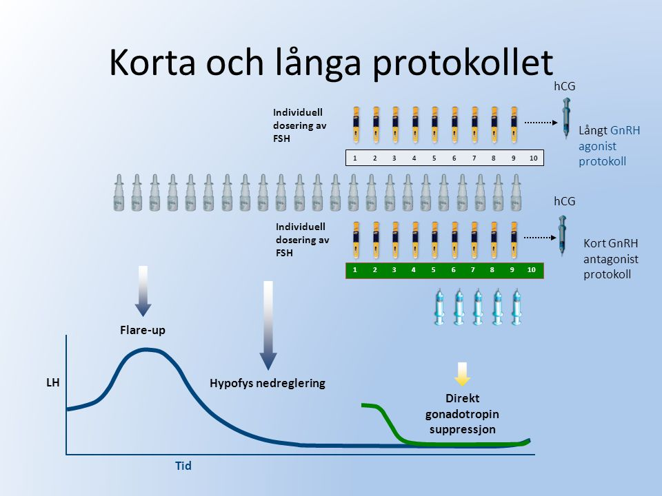 Korta och långa protokollet Kort GnRH antagonist protokoll Långt GnRH agonist protokoll LH Tid Flare-up Hypofys nedreglering Direkt gonadotropin suppr