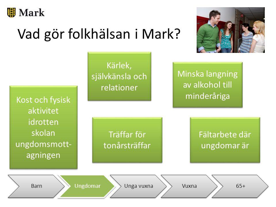 BarnUngdomarUnga vuxnaVuxna65+ Vad gör folkhälsan i Mark? Kost och fysisk aktivitet idrotten skolan ungdomsmott- agningen Kost och fysisk aktivitet id