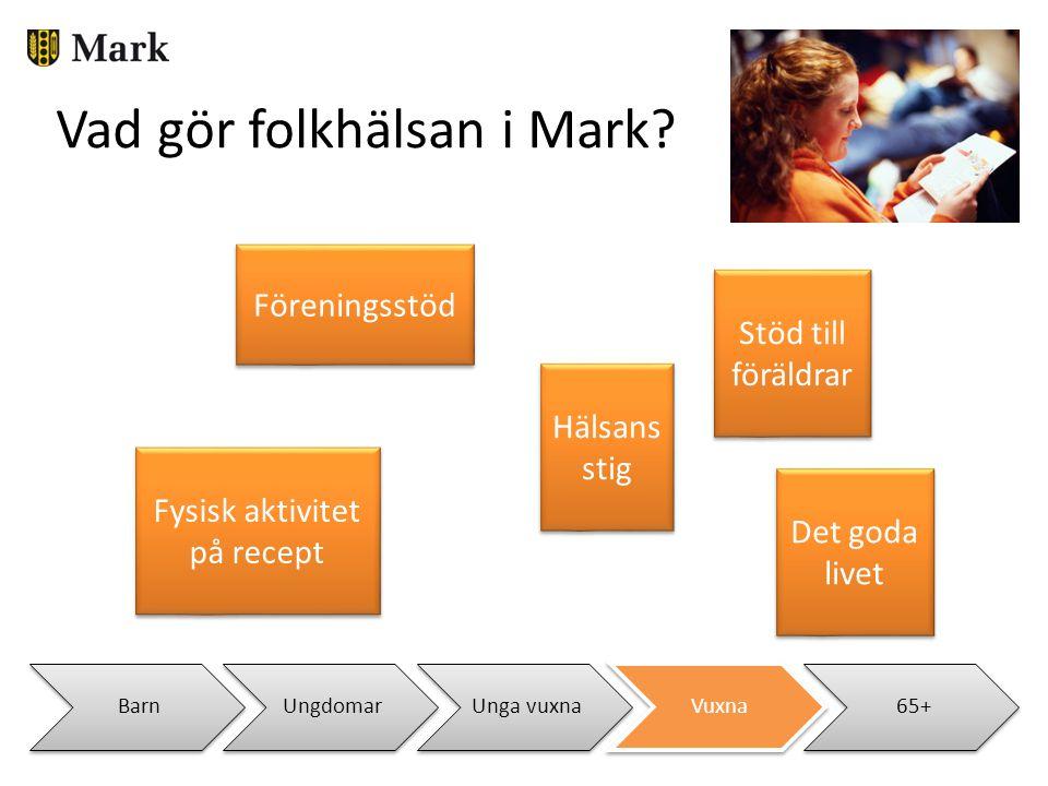 BarnUngdomarUnga vuxnaVuxna65+ Vad gör folkhälsan i Mark? Fysisk aktivitet på recept Hälsans stig Stöd till föräldrar Föreningsstöd Det goda livet