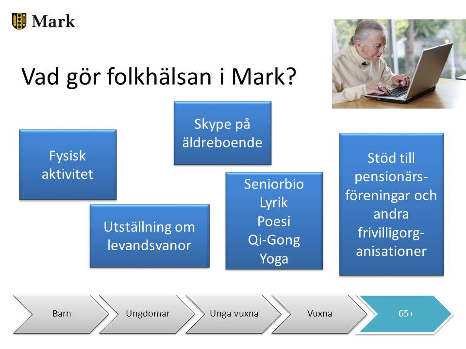BarnUngdomarUnga vuxnaVuxna65+ Vad gör folkhälsan i Mark? Stöd till pensionärs- föreningar och andra frivilligorg- anisationer Skype på äldreboende Se