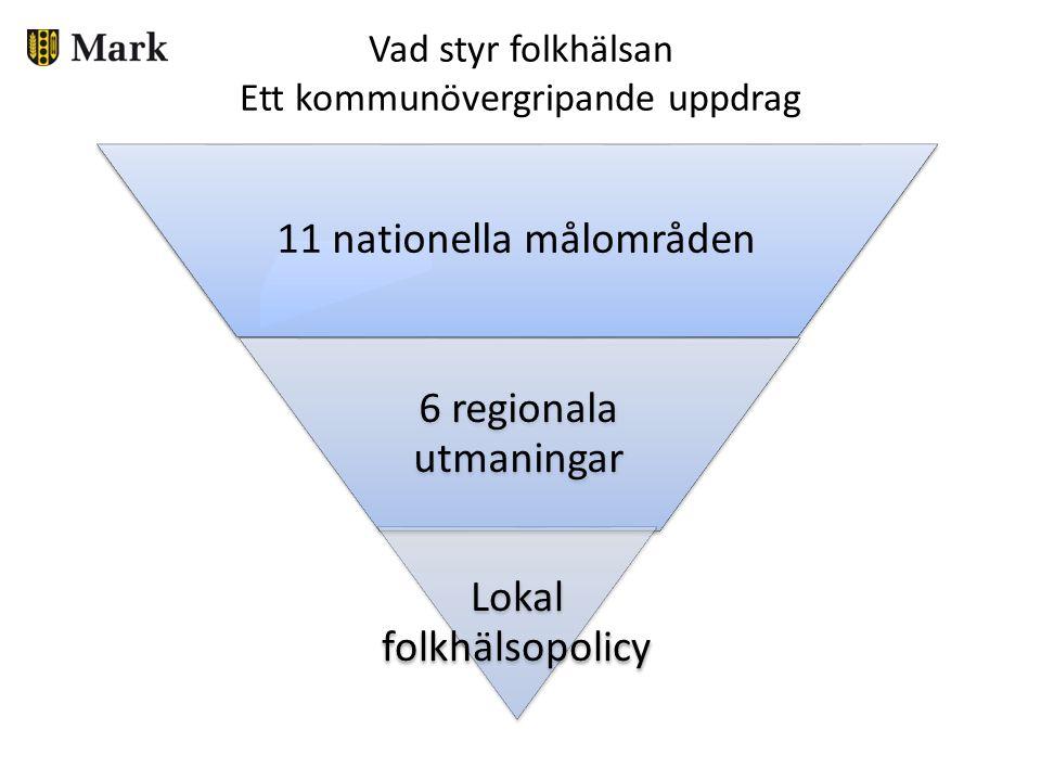 Vad styr folkhälsan Ett kommunövergripande uppdrag
